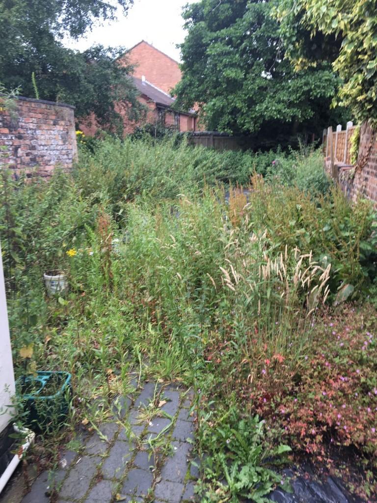 Garden Image 27